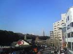 神宮橋交差点の歩道橋から原宿駅方面